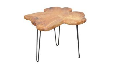 Couchtisch Wood braun