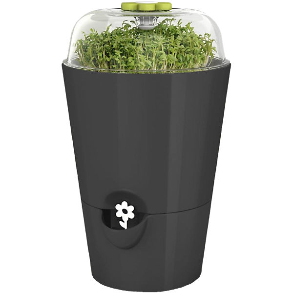bertopf fresh herbs grow mit pflanzglocke bew sserungssystem f r frische kr uter grau. Black Bedroom Furniture Sets. Home Design Ideas