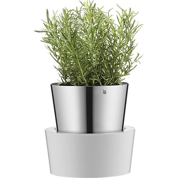 Favorit Edelstahl Kräutertopf mit Wassertank, silber, WMF | yomonda CT62