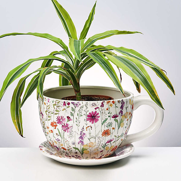 "Pflanztasse ""Plant a Cup""  L 30 x B 22,5 x H 15 cm"